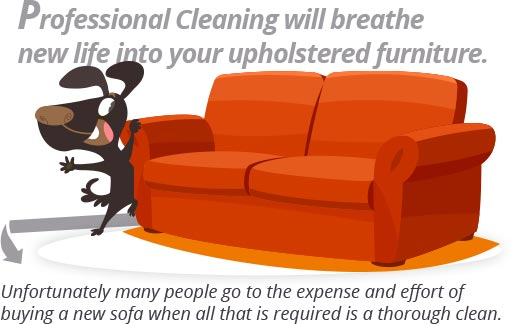 Carpet Cleaning Atlanta Home And